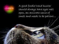 Un buen cazador de tendencias debe tener los ojos bien abiertos, el olfato muy despierto y sobre todo, mucha paciencia.  Hasta el 19 de marzo #OBSERVA