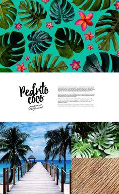 Pedrito Coco Rebranding Concept on Behance