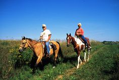 Want to try something a little different?  How about a horse trail ride through Governor Dodge?  We thought you'd like that idea!