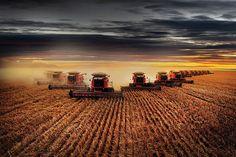 CASE IH AGRICULTURE www.titanoutletstore.com