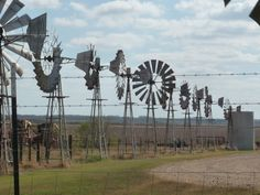 Charlotte Texas Farm and Ranches While driving to Charlotte, Texas listing a ranch I passed a farm that was very well kept with all these windmills , I just had to take a few pictures so everyone can enjoy the Farm Windmill, Texas Farm, Old Windmills, Water Powers, Texas History, Stars At Night, Old Farm, Amazing Nature, Wind Turbine