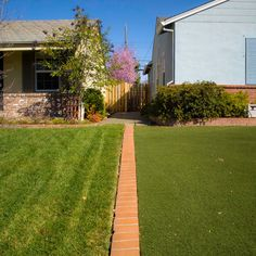 Idea for separating our lawn from our neighbor's lawn.