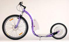 Halk bike-Half Scooter