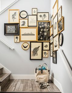 What's black-and-white and gold all over? This gorgeous gallery wall spotted on a stair landing on Sunset. Score a similar look for your own stairway by framing monochromatic prints in a mix of black and gold frames for a bold but sleek display.