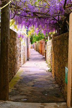 Just walking around | Saint Tropez, France