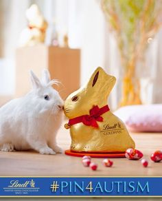 Seeing the Easter Bunny is a favorite Easter tradition of mine.     [I just donated 1 dollar to the Autism cause by pinning this photo. Learn how you can #Pin4Autism too by clicking on the image above.]