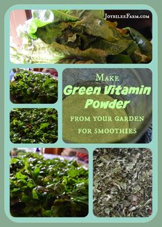 DIY Superfood Greens Supplement Powder -- Joybilee Farm