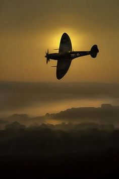 I may have posted this before. If not, then enjoy this Spitfire. If I did, this one deserves a second posting. One of my favorites.
