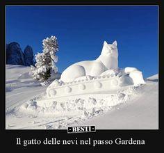 Il gatto delle nevi nel passo Gardena.. Cool Illusions, Italian Humor, Beagle, I Go Crazy, Funny Vines, Human Nature, Animals And Pets, Photo Galleries, Lol