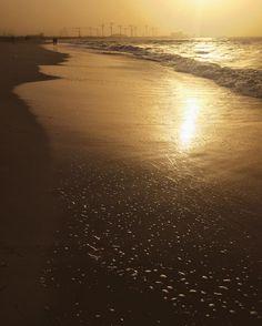 Sadiyyat beach Abu Dhabi   See this Instagram photo by @shaikhayyal