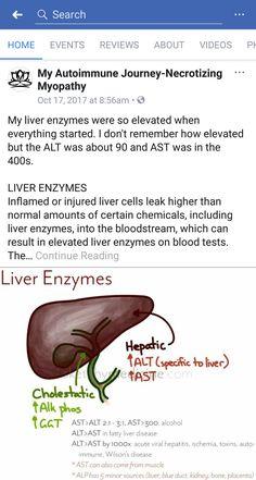 Elevated Liver Enzymes, Muscle Weakness, Feeding Tube, Autoimmune Disease, Journey, Blog