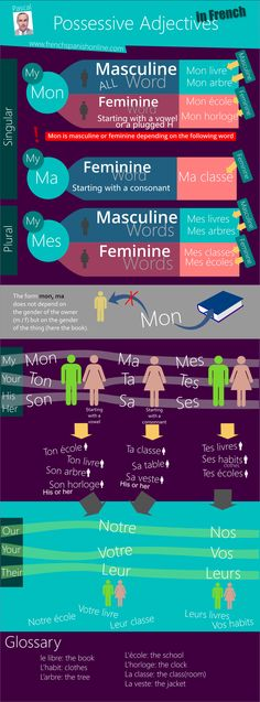 French Possessive Adjectives: http://www.frenchspanishonline.com/magazine/french-possessive-adjectives/