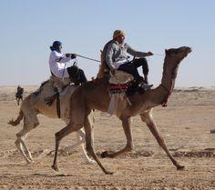 #Hoje #Documentário #Inédito  LE RETOUR DES CAMÉLIDÉS - 21h30 - COM LEGENDA Os príncipes de duas corcovas Eles têm duas corcovas e resistem a tudo os desertos mais áridos frio extremo calor extremo água salgada... Os camelos são originários da América do Norte. Hoje depois de séculos de indiferença eles são novamente objeto da atenção dos homens. Viagem pela rota da seda na Mongólia na China e no Cazaquistão.