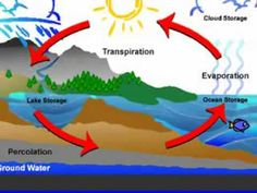 Water cycle and weather song. A little complicated but I really like the first half