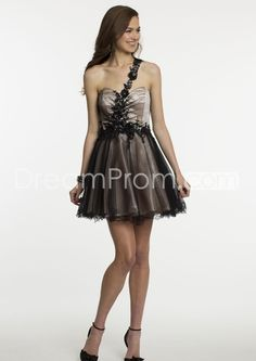 2014 New Short Lace Two Tone Dress Prom Dresses