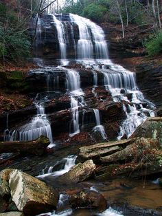 Pearson's Falls is located in the foothills of Western North Carolina.  Between Tryon and Saluda.  It is a wildlife and bird sanctuary made up of 268 acres of native forest.  Spring-fed streams and a quarter of a mile walk to a 90 ft. waterfall.  *Click on pic for more beautiful scenes*  I live in N.C. and I have never been there.  I know where my next weekend trip will be. :-)