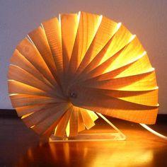 Nautilus Ammonite Fossil Maple Veneer Lamp Light, by Fiona Kingdon