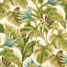 Aqua/Teal, Blue-Light, Grey/Silver, Green-Dark, White/Off White Marine, Outdoor/Indoor, Print  Upholstery Fabric - K6448 CYPRESS