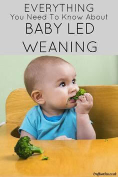 Everything you need to know about Baby Led Weaning! What is it, will it work for your kids and what do you need to do!