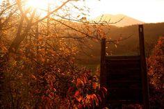 beautiful fall.  Katarinka. Dechtice, Slovakia.