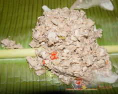 Ginataang Ugob. One unique dish in Catanduanes is Ugob which belongs to the same family of Langka but it's smaller, meatier and with less seeds. It taste like tuna meat.