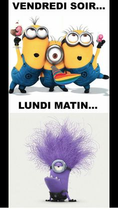 Funny Quotes Minions Hilarious Despicable Me 49 Ideas For 2019 Happy Birthday Funny Humorous, Funny Happy, Funny Birthday, Happy Friday Quotes, Birthday Quotes For Him, Friday Humor, Funny Friday, Tgif Funny, Lol