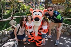 Disneyland Vacations: It's the Little Things That Count