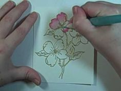 I show you how easy it is to color with Tombo Dual Tip Markers & a waterbrush. Image from Me & Carrie Lou, embossed with Victorian Gold embossin powder. Happy Birthday image is from Stampin' Up's Well Scripted set. Card Making Tutorials, Card Making Techniques, Craft Tutorials, Making Ideas, Tombow Markers, Brush Markers, Brush Pen, Wrapping Paper Crafts, Water Brush