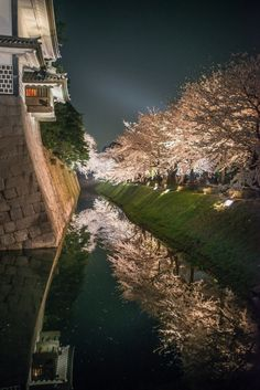 Kanazawa Castle, Ishikawa, Japan | Marc and Porter Photography 金沢城公園