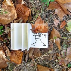 Autumn carnaval # #elyxyak #nature #goodmorning