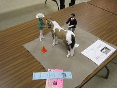 Anne Field Customized Breyer Dolls in MOdel Horse Performance Scenes: Customized Breyer and Mego Dolls for Realistic Halter Showmanship Entry