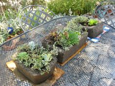 † Step by step instructions and tips for making Hypertufa planters- Make Your Own Concrete Planters!