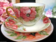 Germany TEA CUP AND Saucer Trio Painted Poppy Pattern Teacup | eBay