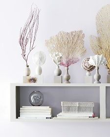Shell Specimen Pedestal | Step-by-Step | DIY Craft How To's and Instructions| Martha Stewart