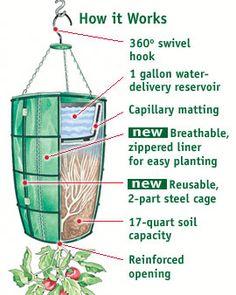 Bolsa contenedora para cultivo