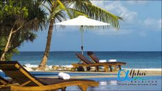Alpha Maldives is a tour operator specialising in luxury Maldives holidays and honeymoon packages, offering a wide range of resorts, offering superb all inc Maldives Luxury Resorts, Maldives Honeymoon, Maldives Holidays, Honeymoon Packages, Luxury Holidays, Tour Operator, Sun Lounger, Villa, Ocean