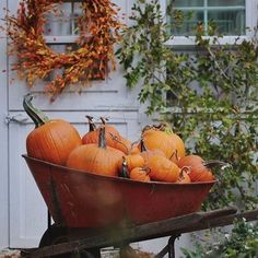 It's pumpkin season & a wheelbarrow full might be just about right. This old red wheelbarrow has a story- it was my… Autumn Decorating, Decorating Ideas, Autumn Aesthetic, Happy Fall Y'all, Autumn Activities, Autumn Garden, Wheelbarrow, Fall Harvest, Harvest Season