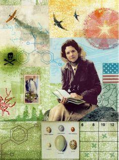 Rachel Carson. Silent Spring. Martin O'Neill 2012
