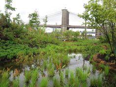 Brooklyn_bridge_park_water_MKMetz.jpg (1600×1200)