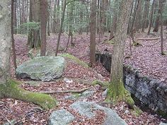 Wandering the Shawangunk Ridge (in this case on Mohonk Preserve property), it's not uncommon to stumble upon old millstone quarries