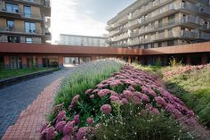 019-Amstelveen Zonnehuis Care Home Landscape by HOSPER
