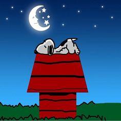 {*} GOOD NIGHT! Snoopy