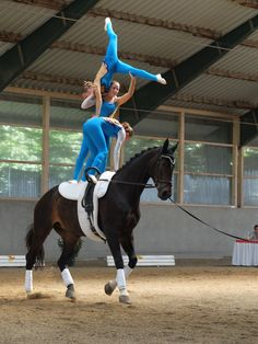 """mangia minga // """"gymnastics on horseback"""": equestrian vaulting team RVC Gilching 2 at the Upper Bavarian championships 2014 Trick Riding, Horse Accessories, Lift And Carry, Vaulting, Horseback Riding, Beautiful Horses, Stunts, Sports Women, Strong Women"""