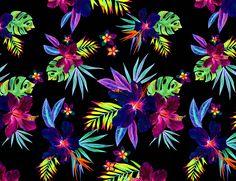 Dark Tropicals by Elena Belokrinitski on Behance