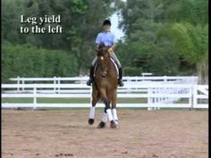 Jane Savoie breaks down the leg yield. This is what it should look like.