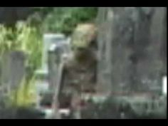 Real Alien Sighting!!!Clearly Seen HIGH QUALITY!!!!!!MUST WATCH!!Spooky - YouTube