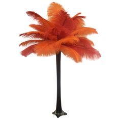 "Wholesale Event Solutions - ""Fire"" Ostrich Feather Centerpiece, $54.96 (http://www.eventswholesale.com/fire-ostrich-feather-centerpiece/)"