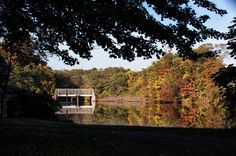 Even at the season's peak, the fall foliage is lackluster this year. Experts say it's due to multiple heat waves and lingering drought conditions.  Have you seen any really good foliage? Share your photos with us by tagging us in them. 📷 by Michael Mancuso  #fall #foliage #fallfoliage #autumn #leafpeeping #newjersey #nj #fall2016