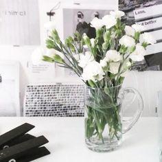 B L O O M | | | #blooms #whiteblooms #whiteflowers #ethicalfashion #ecofashion #consciousfashion #veganfashion #greenfashion #sustainablefashion #slowfashion #fashionrevolution #organic  #organiccotton  #fairtrade  #ecofriendly #earthfriendly #animalfriendly #humanfriendly  #minimal #minimalism  #minimalstyle  #simplicity #basic #monochrome  #inthestudio #fashiondesignstudio  #onthetable  #closeup