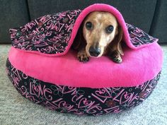 NEW Valentines Dachshund Small Dog Bed Snuggle Bed for Burrowing Dogs Love    Collectibles, Animals, Dogs   eBay!